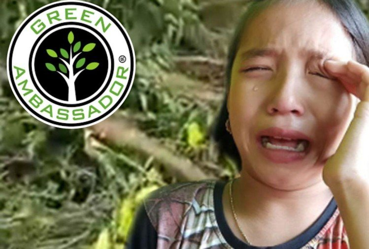 9 year manipuri girl become green ambassador in manipur