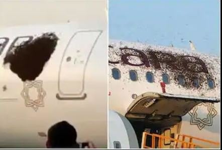 viral video of Honeybees attack on flight in kolkata netaji subhash chandra bose international airport