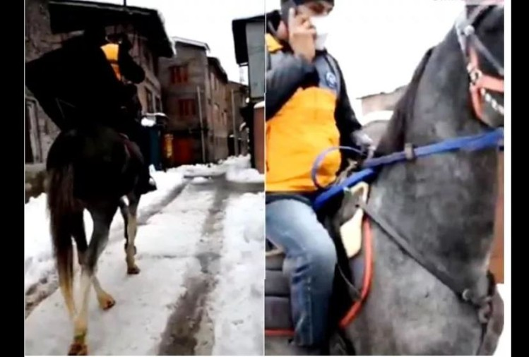 viral video of delivery boy who distributed packets on horse people did hilarious comment on it