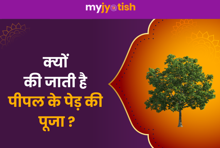 Know why the Peepal tree is worshiped