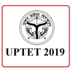 UPTET 2019 Final Answer Key Expected This Week, Details Here