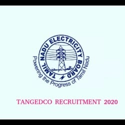TANGEDCO Recruitment Opportunity for 1300 Assessor Post, Application Process to Begin Tomorrow