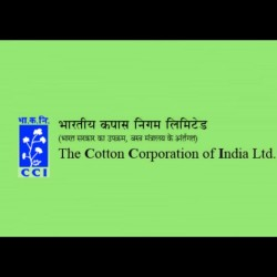 Cotton Corporation of India to Conclude Application Process Tomorrow for Junior Assistant Post