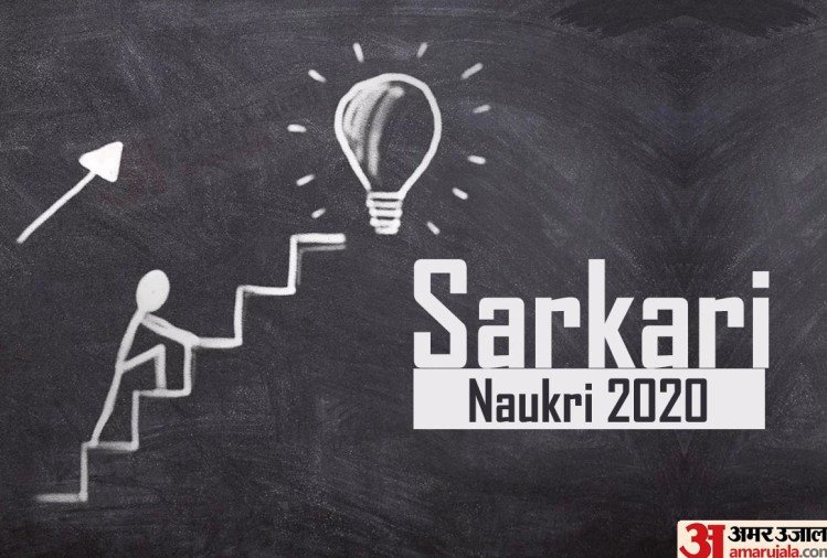 Jobs for Graduates, Apply for 204 Sarkari Posts, Salary Offered 49 Thousand