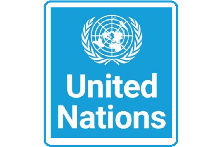 Interested in Working With the United Nations? Here are the 8 Ways to Enter Into UN Jobs