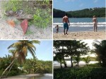 American woman, brutally raped and murdered on island of Grenada