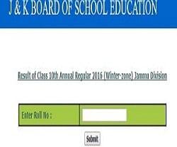Jkbose Class 10 (jammu Division Winter Zone)annual Exam 2016 Results