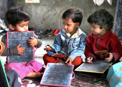 Need more social spending on education, health: Survey