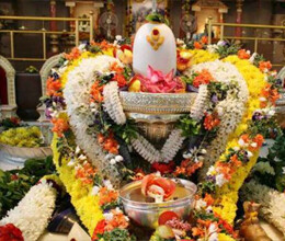 worship-shiv-during-sawan-according-to-rashi