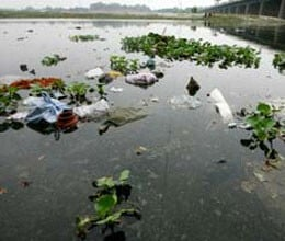 yamuna in delhi carries drains not water says sc