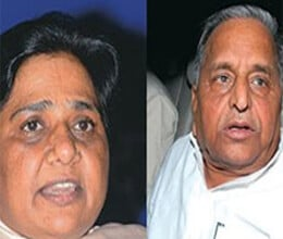 love fighting between sp bsp and congress