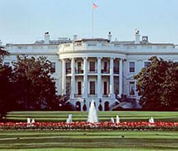 white house floor amroha carpet