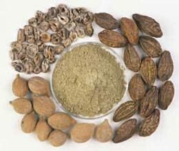 without prescription triphala intake can be harmful