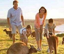 more indians visit australia