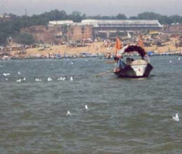 ganges water poisonous from kanpur to Ballia