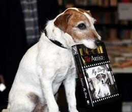 lucky dog uggie the book on dog released in hollywood
