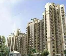 large flat demand in gzb