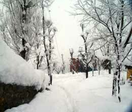 gulmarg receives season first snowfall