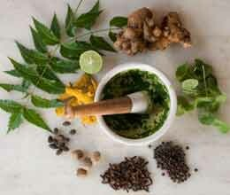 fifth world conference on ayurveda will start from seven in bhopal