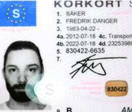swedish fredrik saker paints driving licence picture