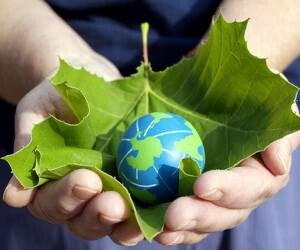 Environment Day will Celebrate on 14 by Ecosikh