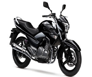Suzuki Inazuma 250 launched in India