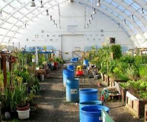 Horticulture Exhibition on 20 Feb